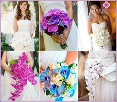 Bryllup buket af orkideer: en kombination af muligheder og ideer med andre farver med fotos