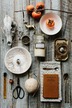 Forage feature for Est magazine Styling : Stephanie Somebody Photo : Tara Pearce Photography