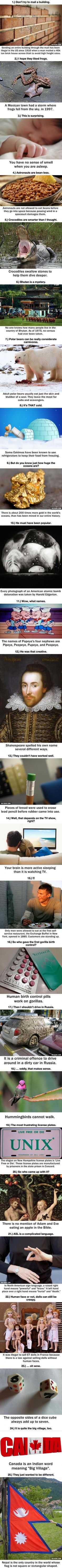 25 Completely Random Things You Didn't Know