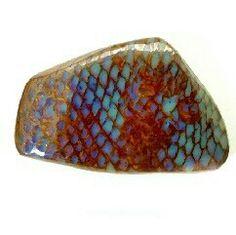petrified snake skin with opal <3