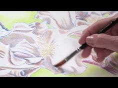 Preview Watercolor Pencil Techniques: How to Paint Flowers from http://ArtistsNetwork.tv here now for painting techniques to establish an easy and quick background, color mixing ideas for creating vibrant flowers, and application tips for wet and dry pencils.