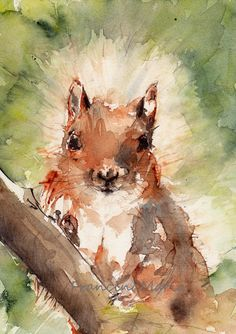 Squirrel, Animal Art, Woodland animal art, Watercolor painting art, Art print watercolor. on Etsy, $20.50