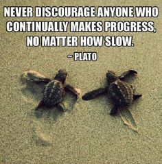 Never discourage anyone who continually makes progress, no matter how slow. -Plato