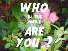 Who (in the world) are you ? by Loulou Darracq #graphism #photography #typography #art #lettering #design #digital #who #in #the #world #are #you ?