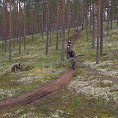 A guided cross-contry bicycle excursion at Rokua Geopark, Finland. Visit Rokua. Ohjatut MTB-ryhmät kauttamme. #mtb #mountainbiking #maastopyöräily