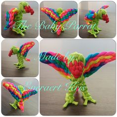 The baby Parrot ( paracord) Made by  Everaert Kris  #paracord #everaert #kris #animal #parrot #bird