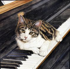 Kitten on the Keys - Animal Art