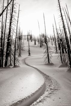 ridepdw: First tracks.