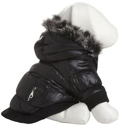 With temps dipping way low, Miles thinks it's time to invest in a Pet Life Parka.