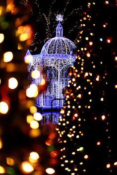 Christmas Illumination   Fukuoka Japan