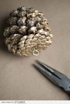 Pine Cones - Nature's Christmas Decoration - Knick… na Stylowi.pl