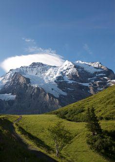 Jungfrau Massiv / Wengen