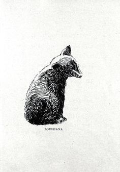 Animal - Bear - Baby bear drawing 3.jpg (1137×1625)