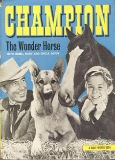 """""""Classic TV Westerns - Champion The Wonder Horse"""" 1970s Childhood, My Childhood Memories, Tv Westerns, The Lone Ranger, Old Tv Shows, 1970s Tv Shows, Drama, Kids Tv, My Youth"""