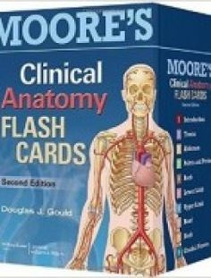 Moores Clinical Anatomy Flash Cards 2nd Edition Pdf Download