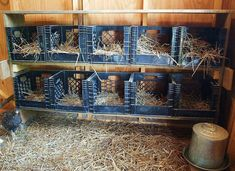 Roosting Crates
