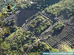 In the Andean region lies the legendary town of Choquequirao, resisting the passage of centuries in the midst of the mountains' sharp boulders and wild vegetation, which still covers almost 80 percent of its surface. www.cuscotraveltr... #choquequiraotrek, #cusco, #peru, #treks, #tour,