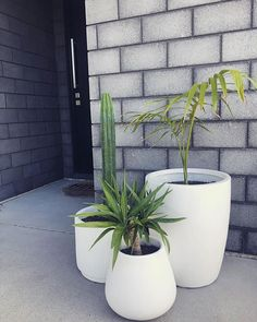 Welcome. Planter Pots