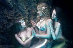 Pretty mermaids