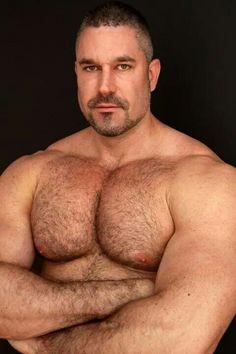 Daddy MuscleBear
