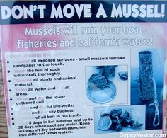 Don't Move a Mussel - Zany Park Signs All Plants, Mussels, Water Crafts, Funny Signs, National Parks, Surface, Feelings, Novelty Signs