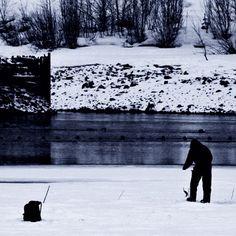 Sånn litt på kanten, livet på Tinnsjøen. . Life at the edge. Seems to pay off. . . #utno #mittnorge #icefishing #visitnorway #bns_nature #jaktfiskeogfriluftsliv #norsketurbilder #norway #norway2day #nikon #photooftheday #winter #fishing #bushcraft #jaktogfjellsport #inatur #lifeofadventure #mittfriluftsliv #dntnotodden #turistforeningen #visittelemark #instalife #instadaily #ig_mood #outdoorlife #cabinlife #bw #lemmelkaffe #coldwater #dinnertime