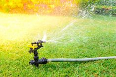 How to Effectively Water Your Lawn | An attractive yard adds to your home's curb appeal, and watering it correctly is essential in the warmer months. #HomeMattersBlog