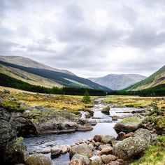 #cainrgormnationalpark in #scotland ! A place that I would #love to go back ! #cairngorms #landscape #landscapephotography #landscapephotographer #unitedkingdom #edinburgh #dundee #hiking #river #wild #nature #mountain #illbeback