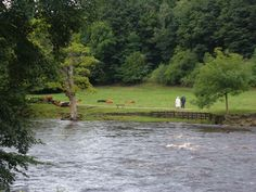 Bolton Abbey, Mike Smith, What You See, Yorkshire, Mountains, History, Nature, Check, Travel