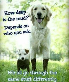 How deep is the mud? Depends on who you ask... We all go through the same stuff differently.
