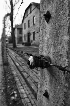 Scenes from Auschwitz The saddest place I've ever been. Humans are the only race that can be this cruel.
