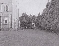 Existing belfry and trees on the western side of St Patrick's Cathedral in 2000