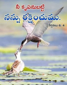 Bible Qoutes, Christ Quotes, Bible Words, Jesus Quotes, Bible Scriptures, Dj Remix Songs, Proverbs 10, Bible Images, Jesus Loves Me