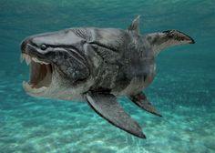 Dunkleosteus fût un des plus gros poisson à avoir nagé dans les océans du Silurien, il y a environ 430 Ma. Ce poisson dit placoderme, recouvert d'une épaisse cuirasse d'os, possédait une mâchoire primitive toute en os, y compris les dents. Ce terrible prédateur pouvait atteindre les 5 tonnes et 10 mètres de long.