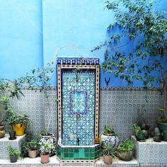 DYNAMIC AFRICA Tunisie