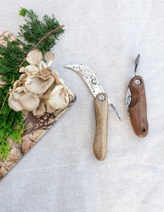 Foraging Knife by Oak's Bottom Forge - Pistils Nursery Web Shop