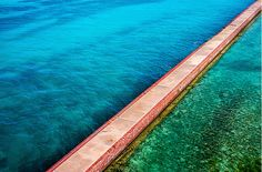 The region is just available by pontoon or seaplane, so leave your telephone at home and appreciate a day away from work the network. Dry Tortugas, World Coins, Don't Worry, Telephone, Dancers, Wilderness, Gadget, National Parks, Places To Visit