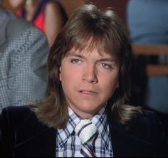 David Cassidy as Keith Partridge