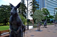 The capital of Western Australia, Perth is a vibrant city with lots to offer all types of travelers.
