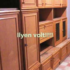 Diy And Crafts, Kitchen Cabinets, House, Furniture, Home Decor, Animals, Ideas, Manualidades, Decoration Home