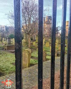 #parallel #railings #thehowffdundee  #WPH_91 #WPH_91_dapperdavid1971 #weeklyphotohunters #photohunt #graveyard Photos from my travels