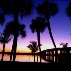 Riverside Tavern Vero Beach FL Vero Beach Fl, Places Ive Been, Spaces, Celestial, Sunset, Friends, Travel, Life, Outdoor