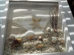 Beach Treasures Shadow Box