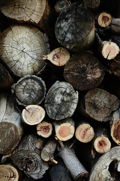 ♕ just finished cutting wood for the winter ~ a wonderful feeling to be done for the year