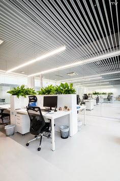 Image 20 of 37 from gallery of PIVEXIN Technology HQ / MUS Architects. Photograph by Tomasz Zakrzewski Open Office Design, Open Space Office, Loft Office, Office Interior Design, Office Interiors, Architecture Design, Architecture Office, Corporate Office Decor, Corporate Offices
