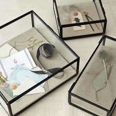 Glass shadowboxes from West Elm