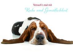 Postkarte Ruhe und Gemütlichkeit-61940495