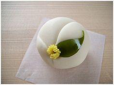 白玉椿 Shiratama tsubaki - White camellia