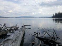 Jenny Lake Loop in Moose WY