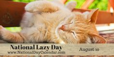 On August National Lazy Day gives us permission to relax and kickback. So, we're going to be a bit lazy here. National Days, National Holidays, Calendar Day, National Day Calendar, 21st Century Learning, Digital News, August 10, Holiday Pictures, Holiday Traditions